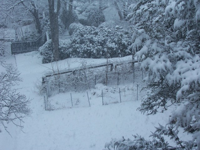 snow 4